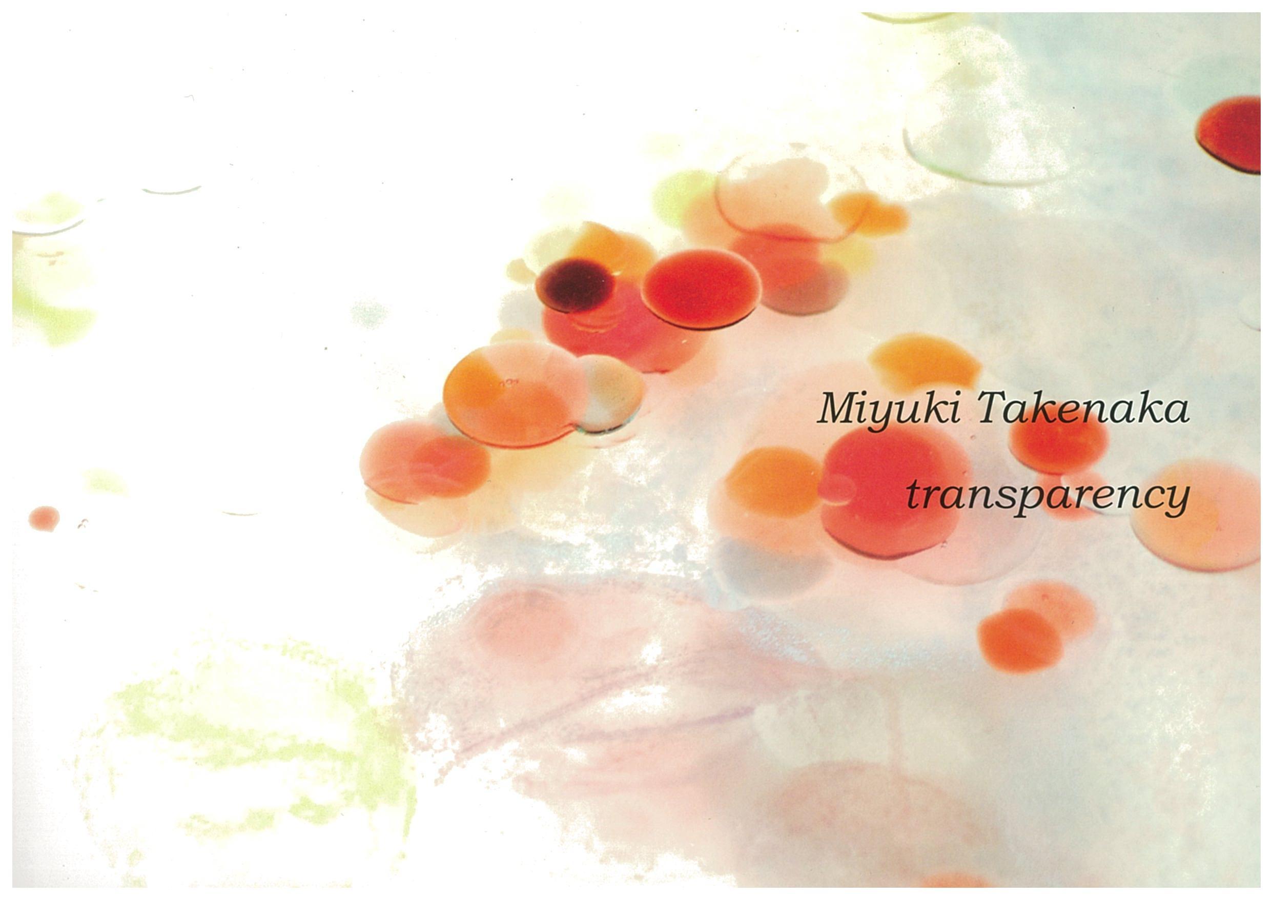 竹中美幸作品集  Transparency: Miyuki Takenaka