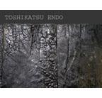 Toshikatsu Endo: Trieb⇔Void