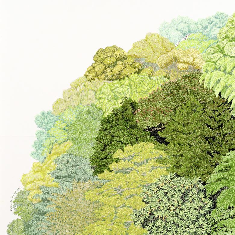 吉田夏奈 - 海は青い、森は緑