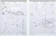 Miyuki Takenaka: Transparency
