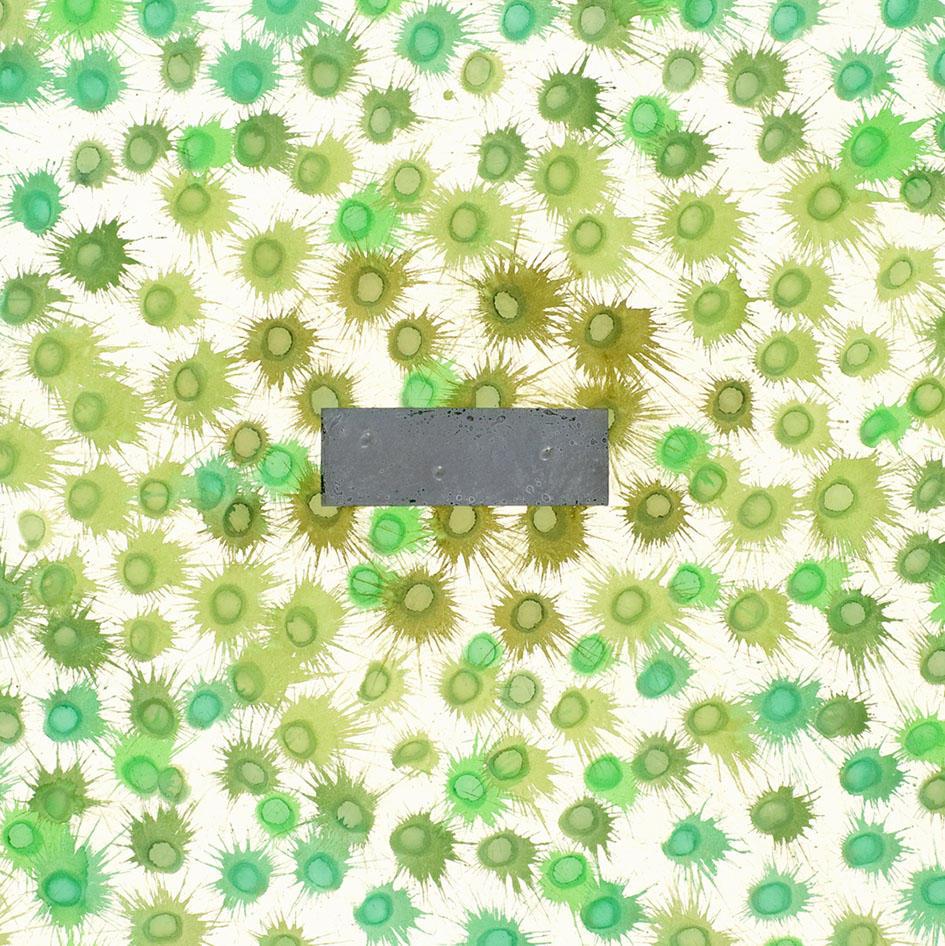 河口龍夫 作品紹介02 : 「種子の周囲に」展、1994