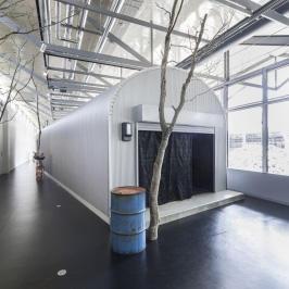 Echigo-Tsumari Art Triennale 2015 Art Tour Report No.5 - Leandro Erlich