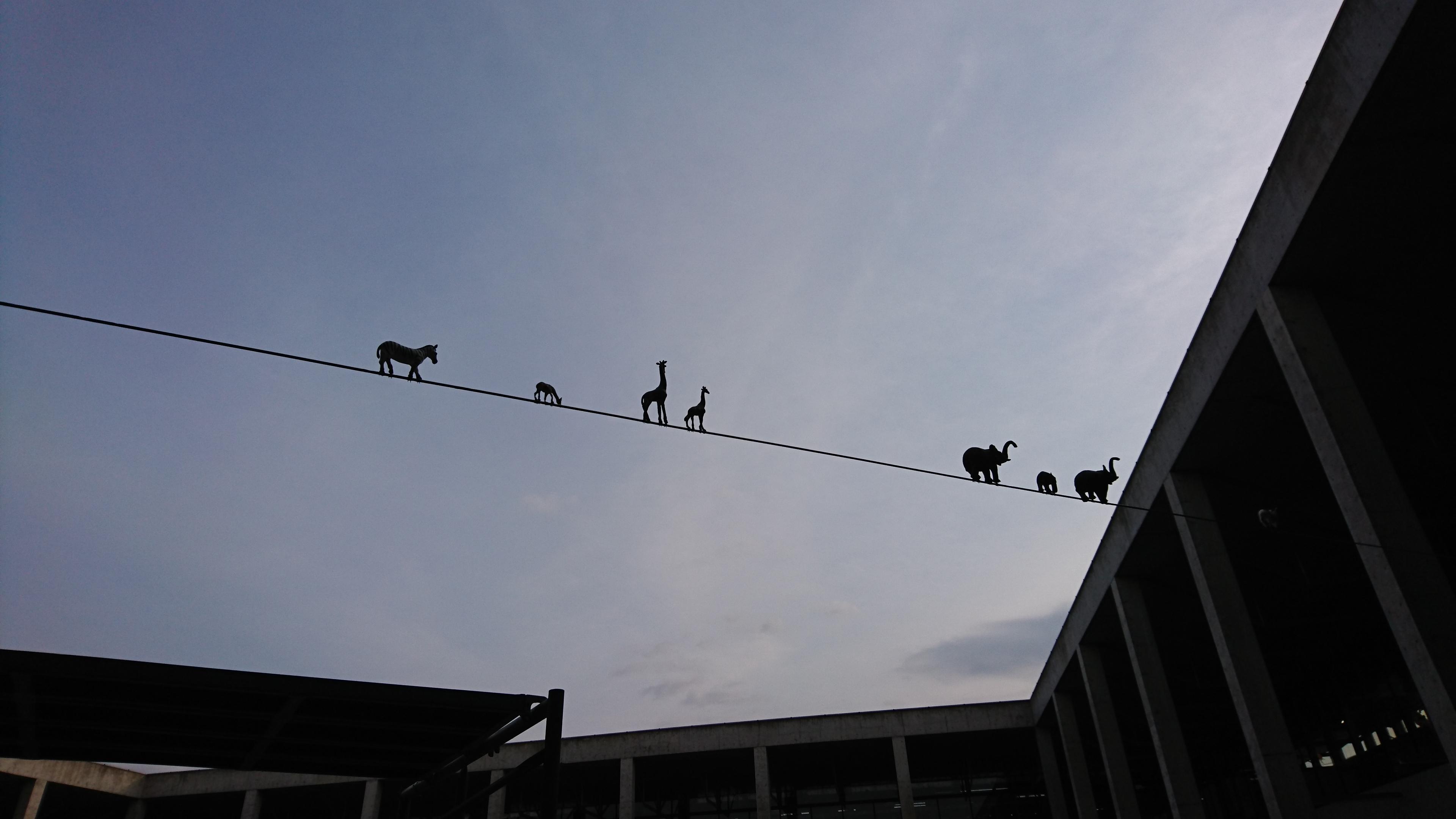 『大地の芸術祭』もう一度見たい名作展 @越後妻有里山現代美術館キナーレ