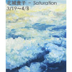 Takako Hojo: Saturation