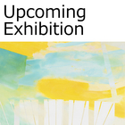 Aki Yamamoto's Solo Exhibition