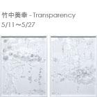 竹中美幸-Transparency