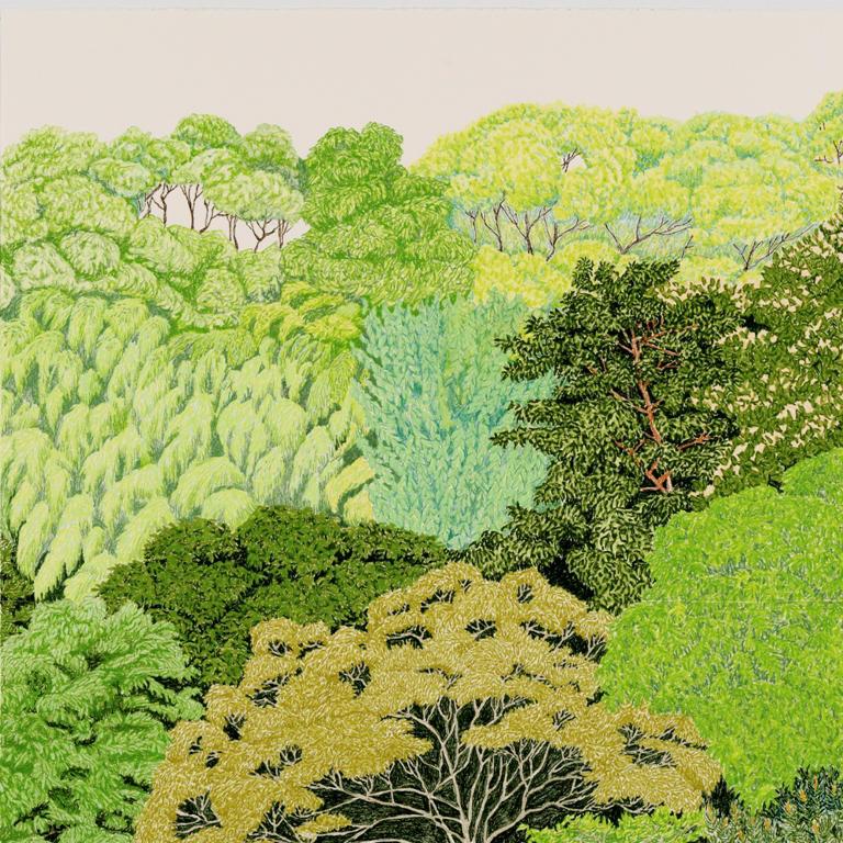 Forest Green, Ocean Blue, Sun Shining
